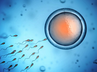 Female Infertility